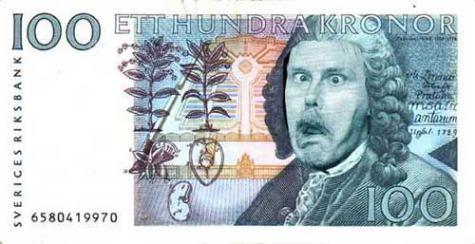 Pengar - hundralapp 100 kr
