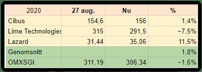 De här aktietipsen i DI i augusti 2020 har tack vare Kinnevik B fått en bra start.