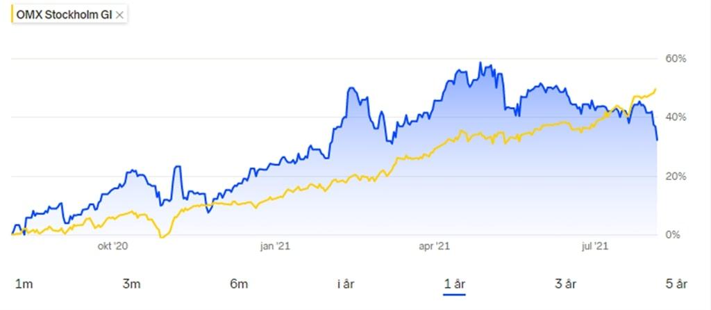 Min portfölj med nöjesaktier steg med 32 procent under det andra året. Det i sig är en bra avkastning, men det är klart sämre än börsindexet OMXSGI som rusade 50 procent under samma period, 5 augusti 2020 - 5 augusti 2021.